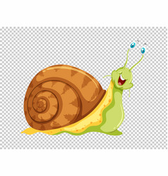 Green snail on transparent background vector