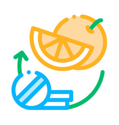 medicines and fruits supplements icon vector image