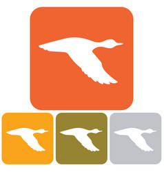 silhouette flying duck vector image