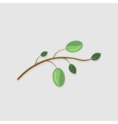 Modern olive branch on gray vector