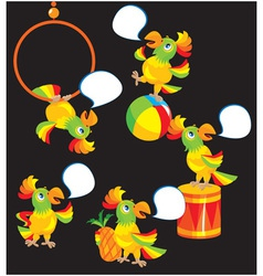 Set of parrot cartoons vector image vector image