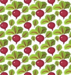 Beet seamless pattern Beetroot endless background vector image