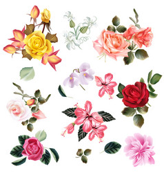 Big set of realistic flowers for design vector