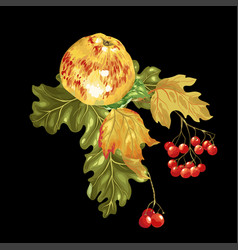decorative element for thanksgiving and harvest vector image