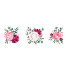 eucalyptus bouquet set vector image
