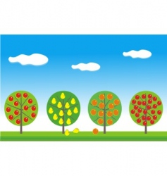 fruit garden vector image