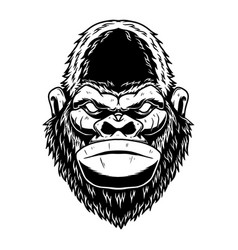 head angry ape in vintage monochrome style vector image
