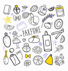 woman fashion hand drawn doodle perfume beauty vector image