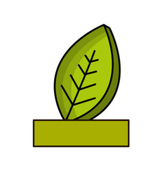 natural leaf with ribbon icon vector image vector image