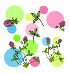Abstract background with red clover leaves and vector