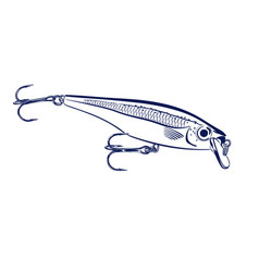 spinning lure wobblers vector image