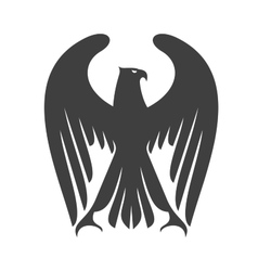 Majestic eagle or falcon with long wing feathers vector image vector image