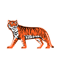 Bengal tiger full body mascot vector