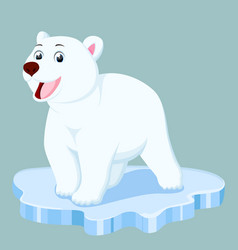 Cute polar bear cartoon vector