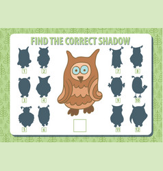 owl find the correct shadow horizontal album a4 vector image