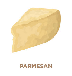 Parmesandifferent kinds of cheese single icon in vector