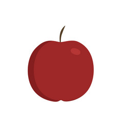 red apple icon in flat design vector image