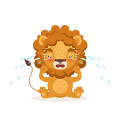 Sad little baby lion cartoon character sitting on vector