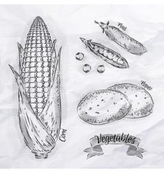 Vegetables corn peas potatoes vintage vector image