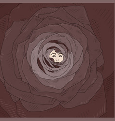 with abstract cartoon rose vector image vector image
