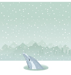 dolphin from ice-hole vector image