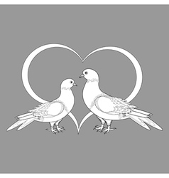 A monochrome sketch of two doves and a heart vector image