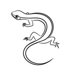 Cartoon of little lizard outlined vector