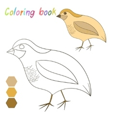 Coloring book quail kids layout for game vector