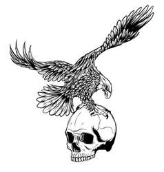 eagle and skull design art vector image