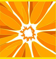 orange poster vector image