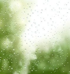 raindrops on the window vector image