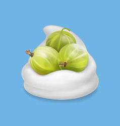 gooseberry in yogurt fruit vector image