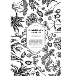 Card design with black and white aloe calendula vector