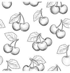 fresh cherry seamless pattern summer berry food vector image