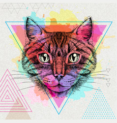 hipster animal cat on artistic polygon watercolor vector image