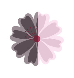Japanese cute flower icon vector