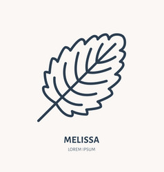 Melissa flat line icon medicinal plant leaf vector