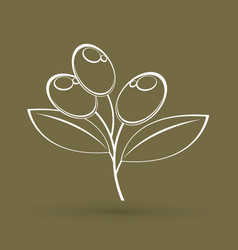 olive outline graphic vector image