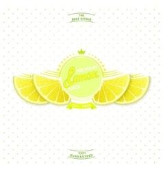Premium quality lemon juice vector image