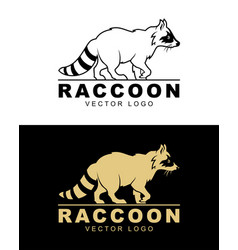 Raccoon logo vector
