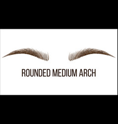 Rounded medium arch hand drawn brows shape vector