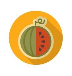 Watermelon flat icon fruit vector