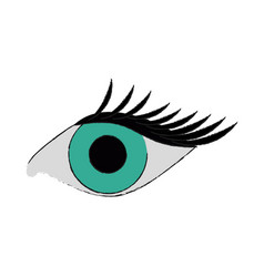 single eye with lashes icon image vector image