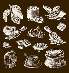 Cocoa products handdrawn sketch doodle vector