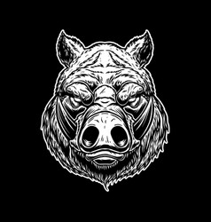 head wild angry boar in vintage monochrome vector image
