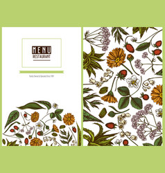 Menu cover floral design with colored aloe vector
