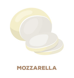 Mozzarelladifferent kinds cheese single icon vector