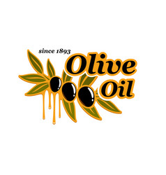 Olive oil cooking olives product icon vector