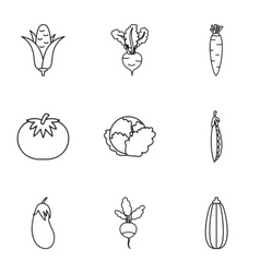 Orchard vegetables icons set outline style vector image