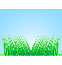 Wisps of lush grass vector